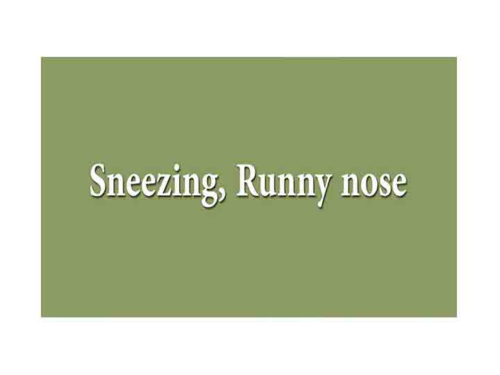 Nasal Allergy Treatment Symptoms Home Remedies